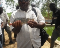 Mali Visit 2009